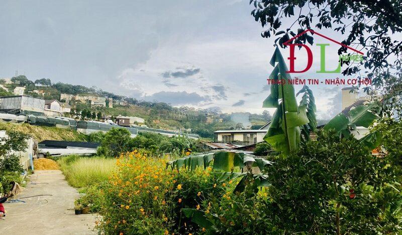 Bán căn biệt thự hai mặt tiền An Bình P3 Đà Lạt thung lũng xanh giữa lòng thành phố